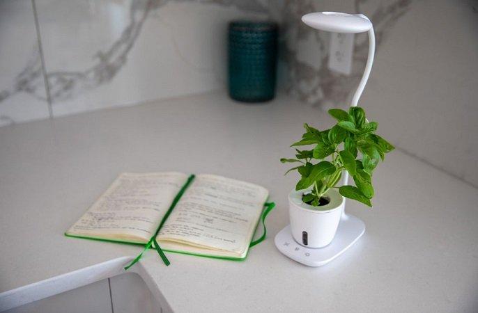 Introducing Grow Pad Mini