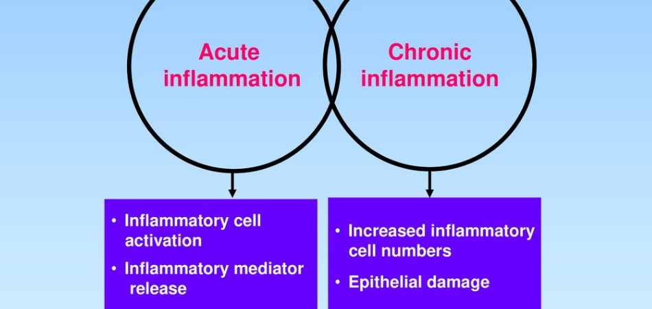 Difference Between Acute and Chronic Asthma [Factors Contributing] 1