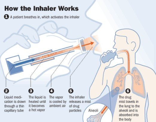 How Does An Inhaler Work In The Body